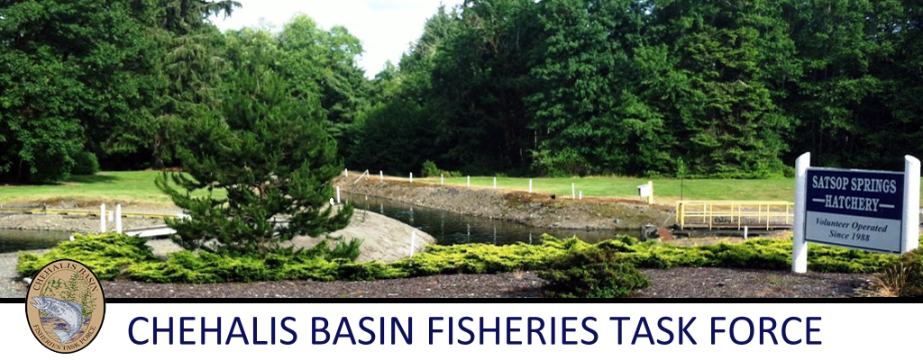 Chehalis Basin Fisheries Task Force